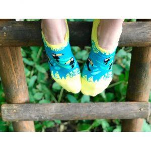 Toucan socks