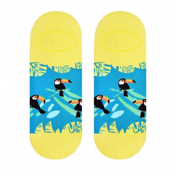 Toucan socks design